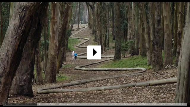 Zum Video: Leaning into the Wind - Andy Goldsworthy