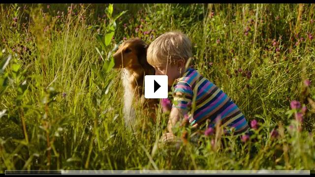 Zum Video: Matti & Sami und die drei größten Fehler des Universums