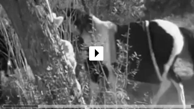 Zum Video: Yancy Derringer