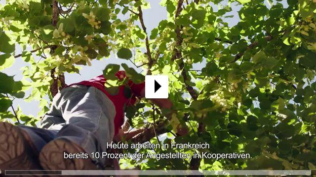 Zum Video: Zeit für Utopien