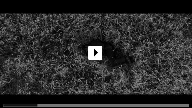 Zum Video: Grain - Weizen