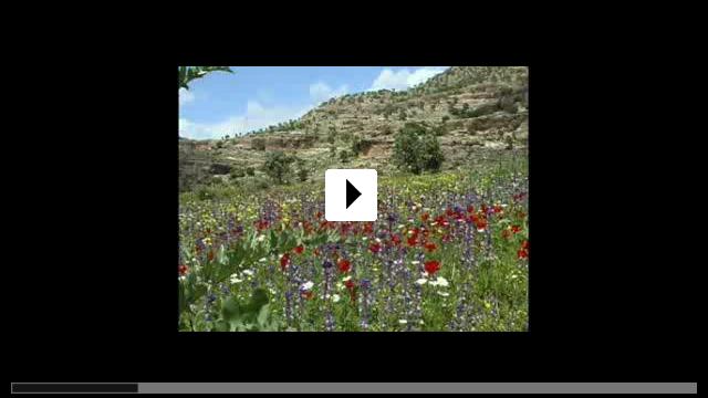 Zum Video: Und macht euch die Erde untertan