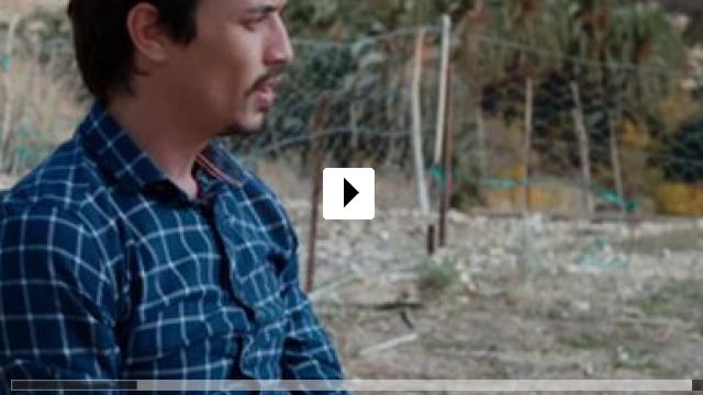 Zum Video: Warten auf Schwalben