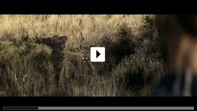 Zum Video: The Endless