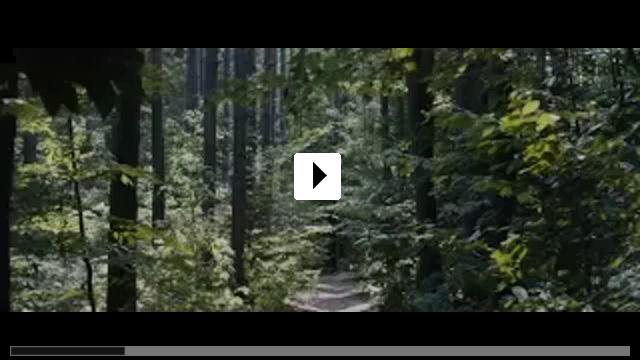 Zum Video: Friedhof der Kuscheltiere