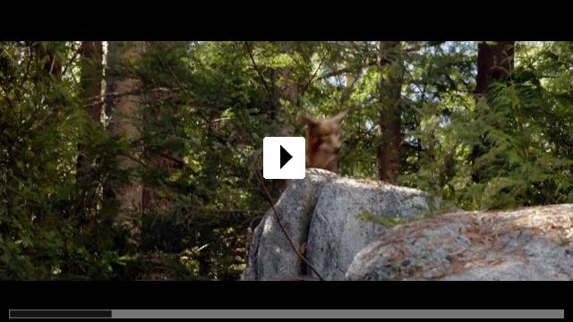Zum Video: Die unglaublichen Abenteuer von Bella