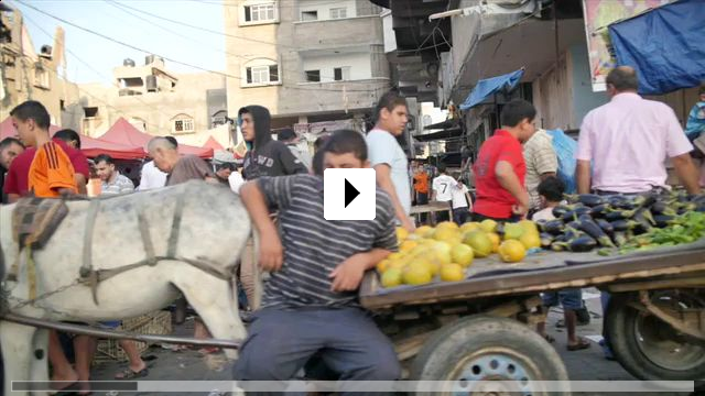 Zum Video: Gaza