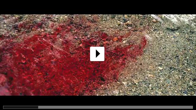 Zum Video: Robin Hood - Der Rebell