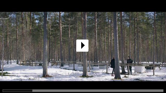 Zum Video: Das Entschwinden