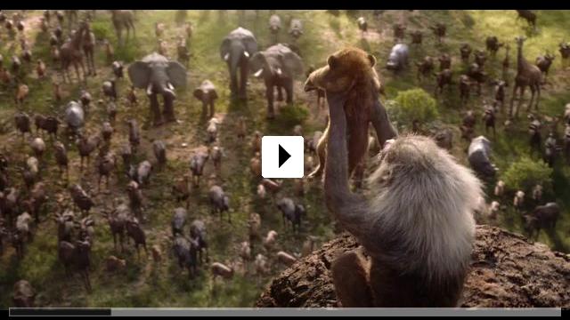 Zum Video: Der König der Löwen