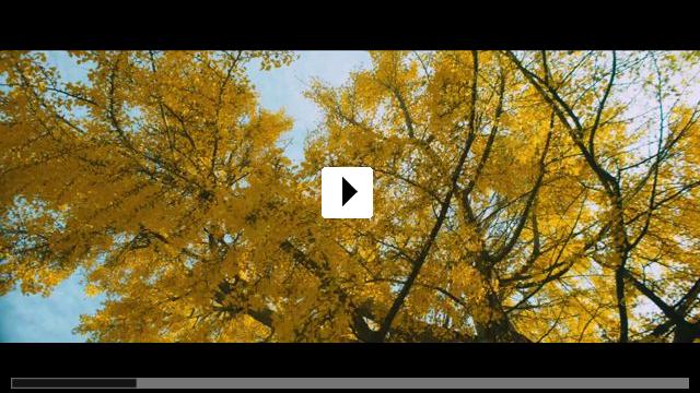 Zum Video: Van Gogh - An der Schwelle zur Ewigkeit