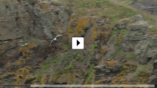 Zum Video: WkdW