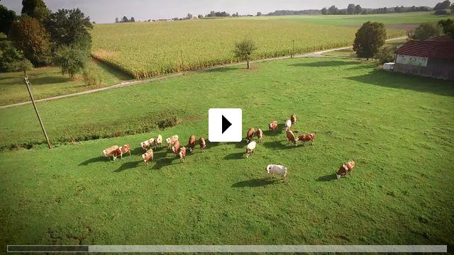 Zum Video: Flugzone Neu-Ulm - Vom Heute zum Morgen