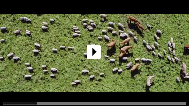 Zum Video: Unsere große kleine Farm