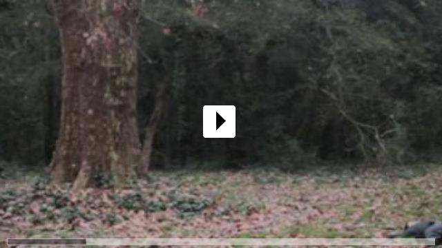 Zum Video: La flor