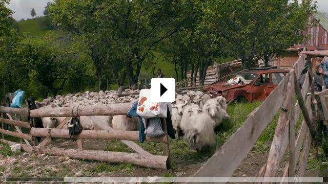 Zum Video: Transilvania Mea - Von Gewinnern und Verlierern