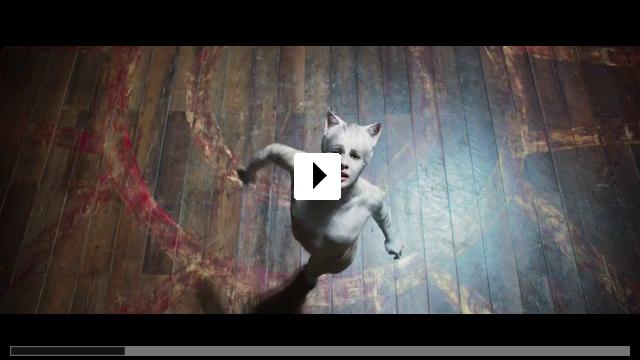 Zum Video: Cats