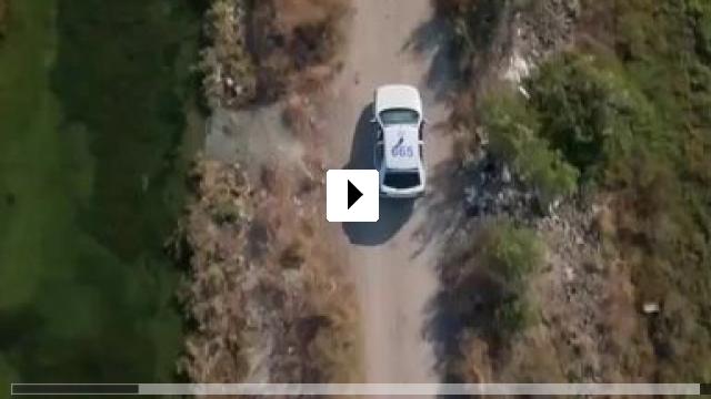 Zum Video: Das Wunder im Meer von Sargasso