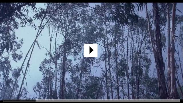Zum Video: Liberté