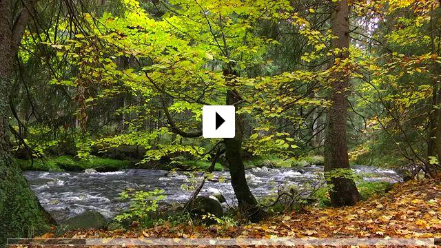 Zum Video: Das Riesengebirge