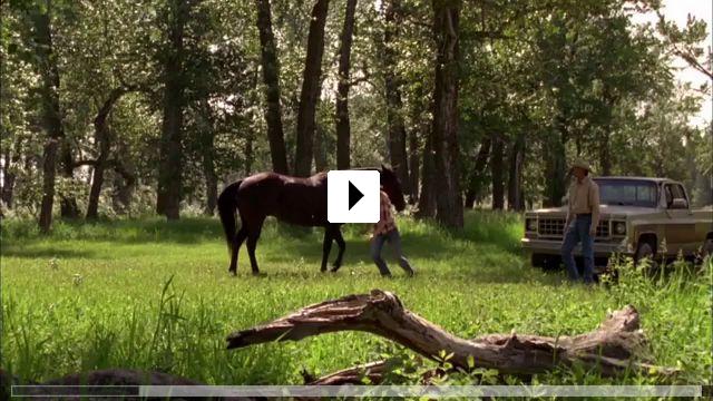 Zum Video: Heartland - Paradies für Pferde
