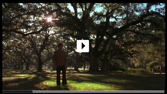 Zum Video: Dream Boy