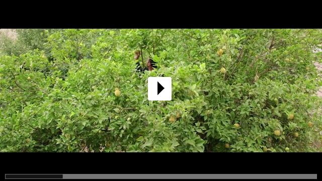 Zum Video: Vom Gießen des Zitronenbaums