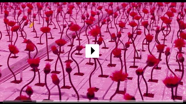 Zum Video: Little Joe - Glück ist ein Geschäft