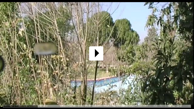 Zum Video: Swimmingpool am Golan