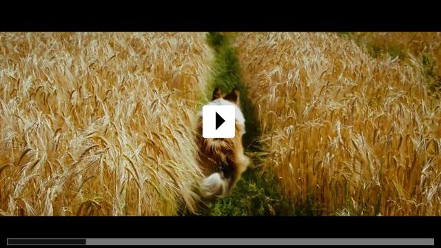 Zum Video: Lassie - Eine abenteuerliche Reise