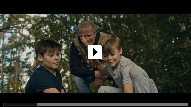 Zum Video: Kahlschlag