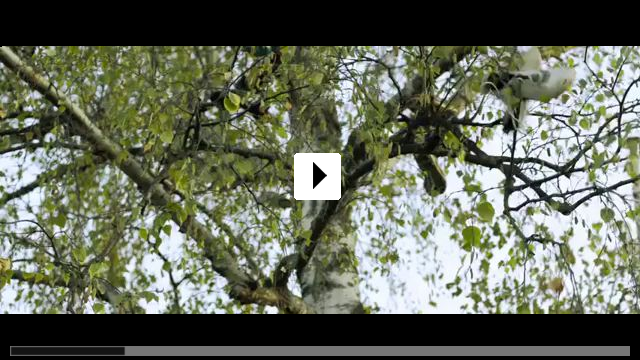 Zum Video: Zu weit weg