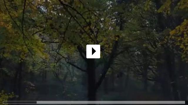 Zum Video: Hänsel und Gretel: Hexenjäger 2