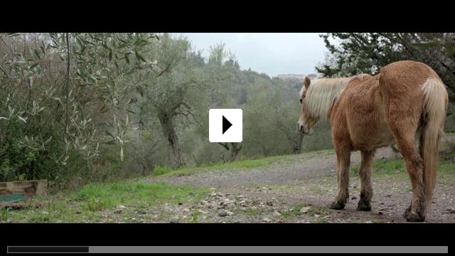 Zum Video: Die Liebe frisst das Leben