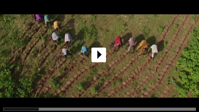 Zum Video: The Great Green Wall