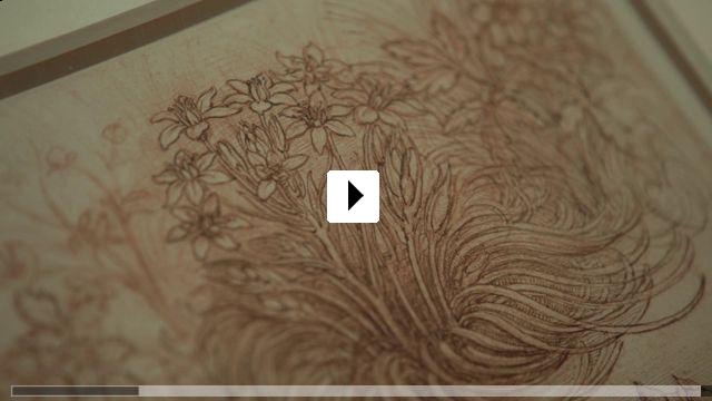 Zum Video: Eine Nacht im Louvre: Leonardo da Vinci