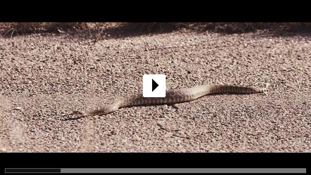 Zum Video: Ausgrissn! In der Lederhosn nach Las Vegas