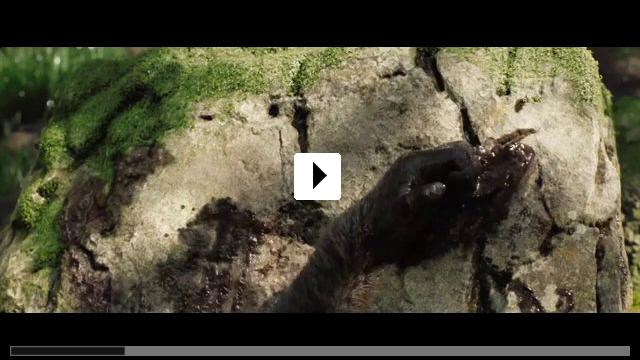 Zum Video: Der einzig wahre Ivan
