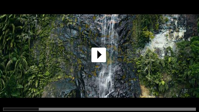 Zum Video: Die Stimme des Regenwaldes