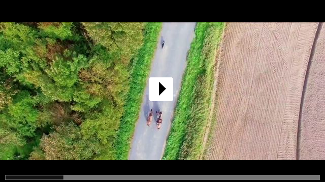 Zum Video: Wildherz