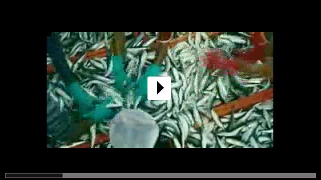 Zum Video: Wild Ocean 3D