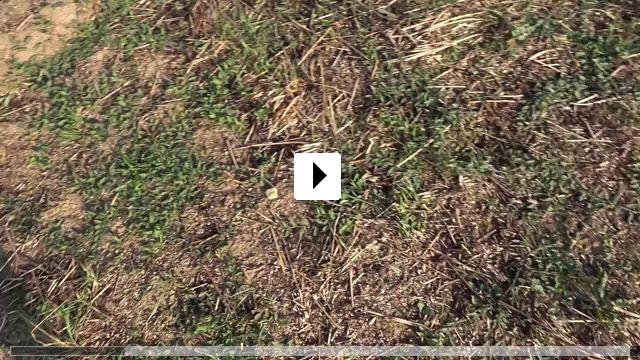 Zum Video: Verplant - Wie zwei Typen versuchen, mit dem Rad nach...fahren