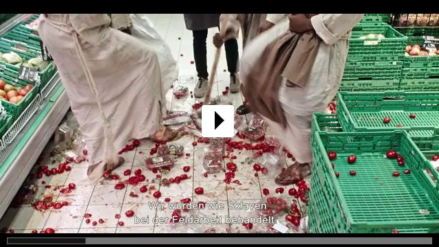 Zum Video: Das Neue Evangelium