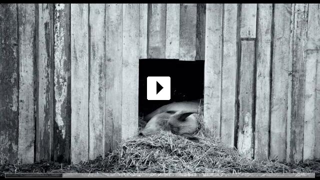 Zum Video: Gunda