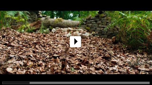 Zum Video: Die Magie der Träume