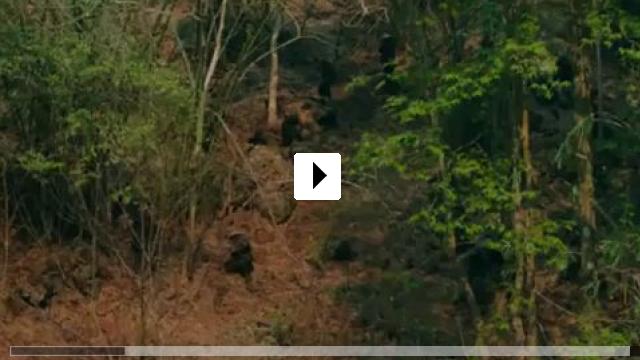 Zum Video: Da 5 Bloods