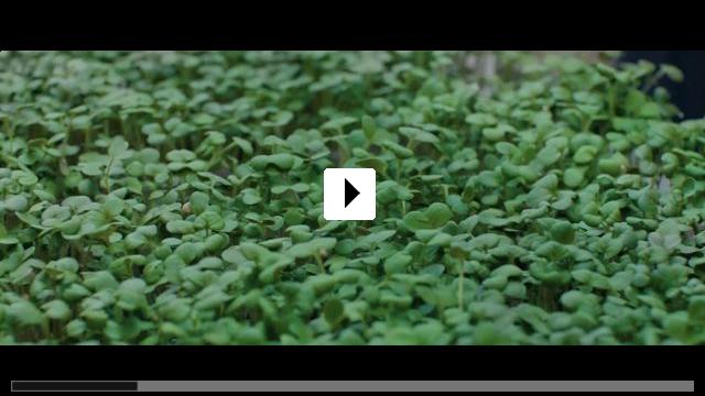 Zum Video: Stowaway - Blinder Passagier
