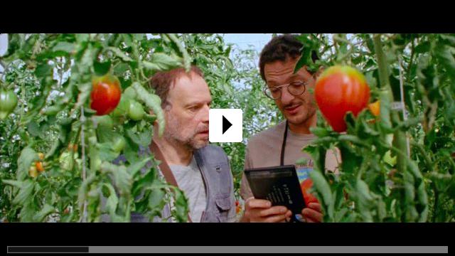 Zum Video: Online für Anfänger