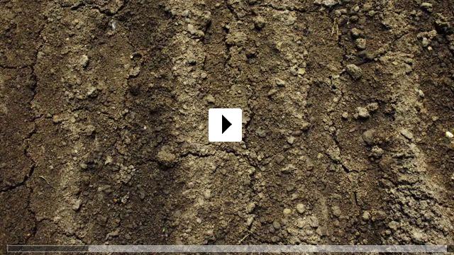 Zum Video: Heimat Natur