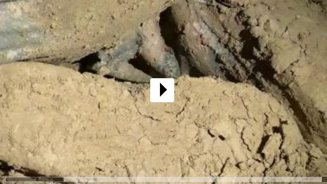 Zum Video: Das Riesending